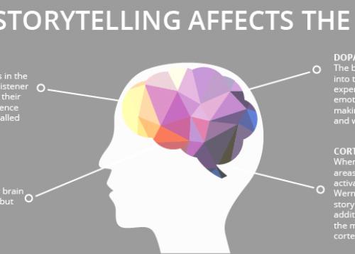 storytelling et cerveau